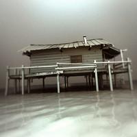 cajun house swamphouse 3d model