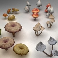 3d mushrooms model