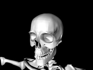 bone skeletal obj