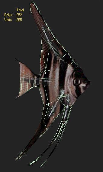 fish skalyaria max