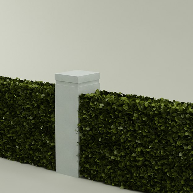 bush plant hedge 3d model