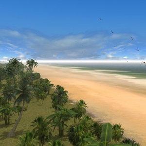 beach palms sand 3d max