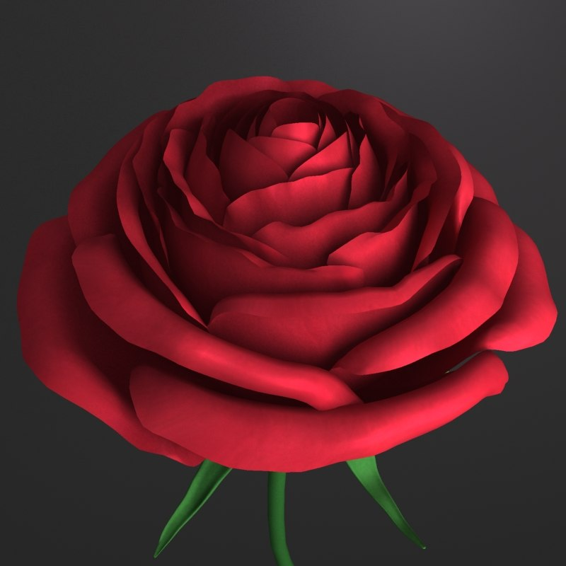 3d model red rose flower
