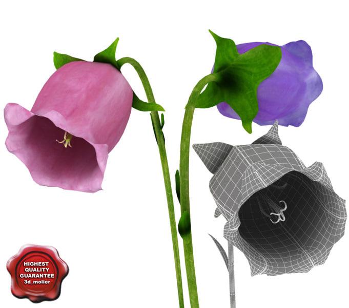 3ds bellflowers modelled