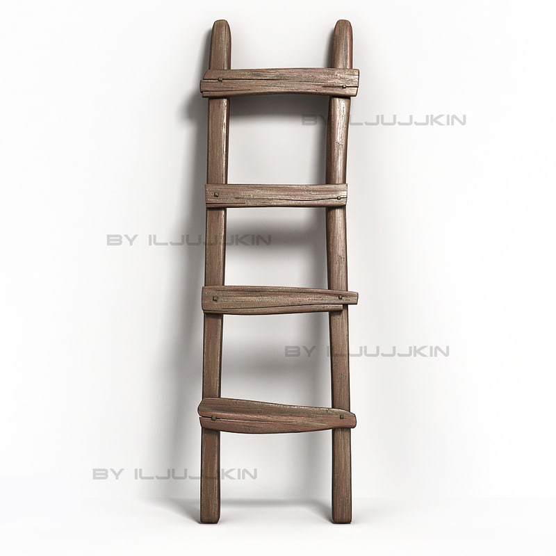 3d Old Ladder Model