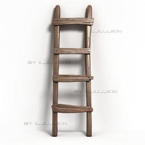 3d old ladder model