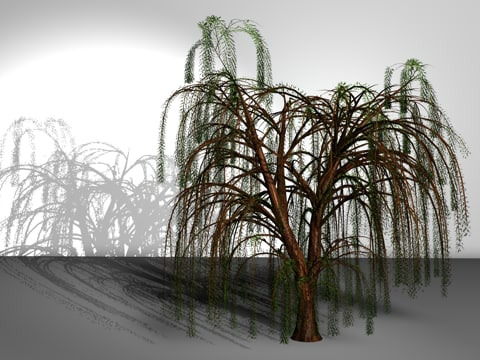 3ds max wiping willow