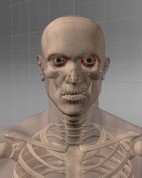 maya realistic man skeleton