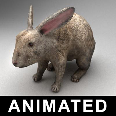 3ds max rigged rabbit animation