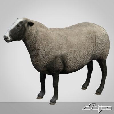 3d 3ds sheep