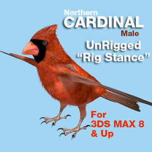 3d model cardinal-mapped-rigstance cardinal rig stance