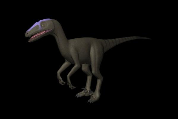 3d model theropod deinonychus modeled 001