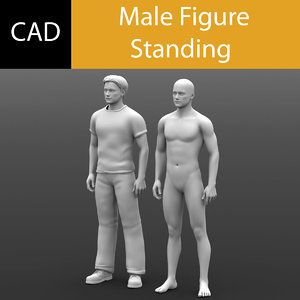 3d model cad male standing