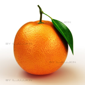 max orange fruit