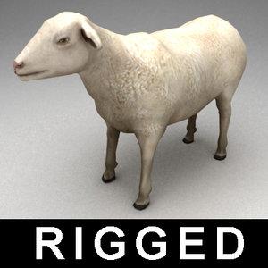 3dsmax rigged sheep