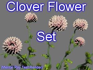 3d model set clover flowers