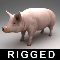 rigged pig 3ds