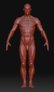 human ztl 3d model