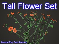 set tall flowers max