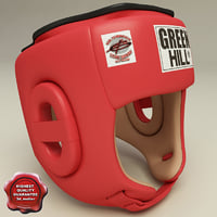 Training Boxing Helmet
