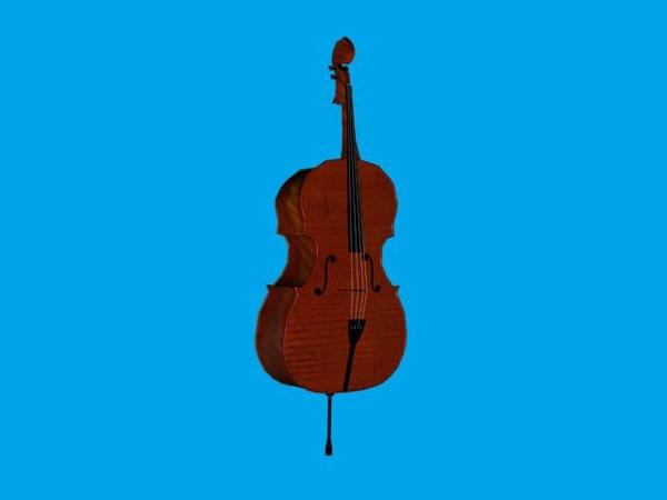 3d model musical instrument cello