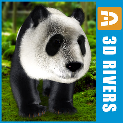 maya giant panda
