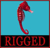 rigged seahorse max