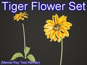 3d max set tiger flowers