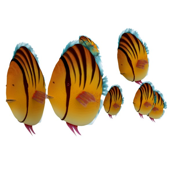 3d model fredfish fred fish