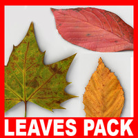 Fallen Leaves Pack