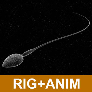 3dsmax sperm cell animations