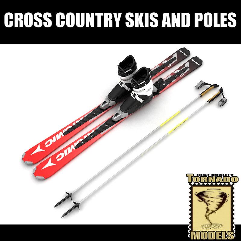3d model skis boots poles