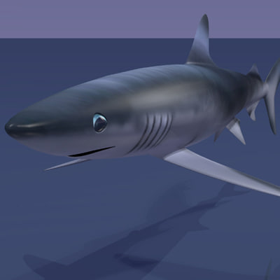 3ds max blue shark