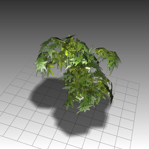 3ds max nature ferns stones
