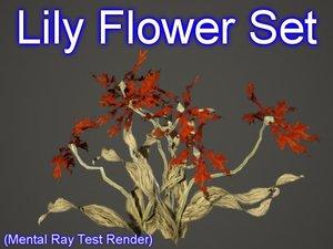 obj set lily flowers
