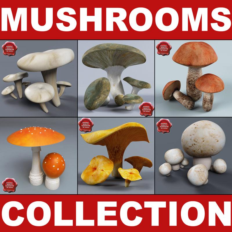 3ds mushrooms set lactarius
