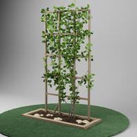 plant_garden_05