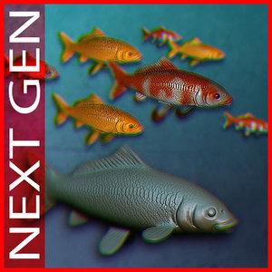 koi fish 3d max