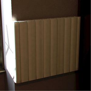 radiator interior 3d 3ds