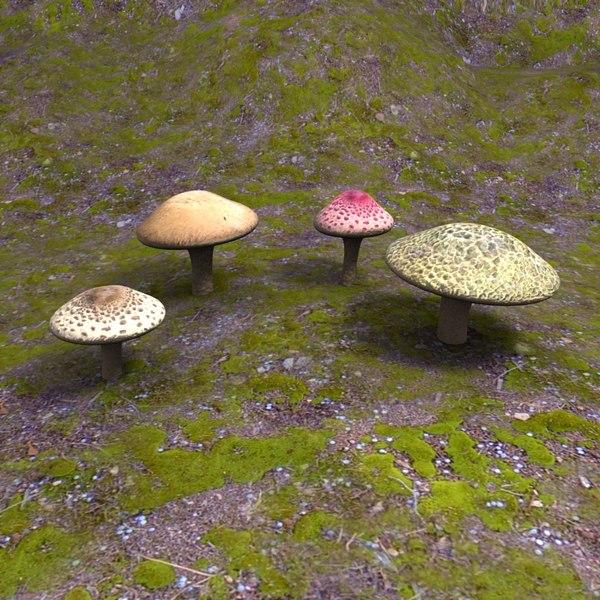 3d 4 mushrooms