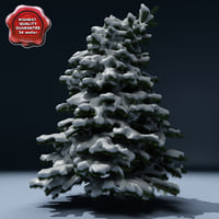 winter tree v5 3d model