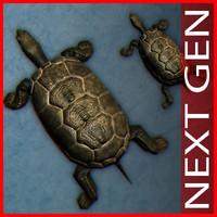 turtle_pond