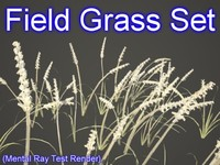 set field grasses 3d model