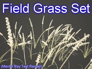 set field grasses 3d model