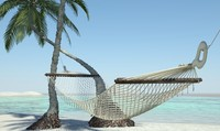 3d model of hammock beach