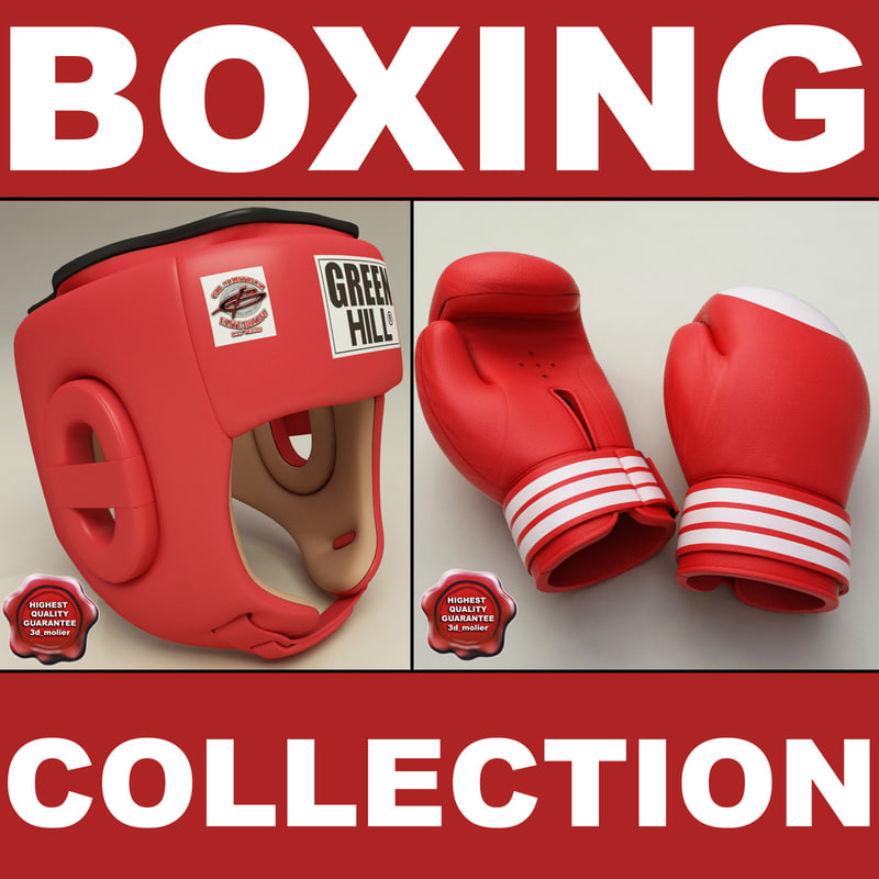 training boxing helmet gloves 3d max
