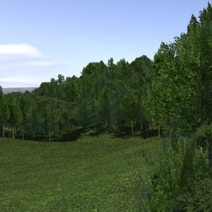 forest lined grassy terrain max