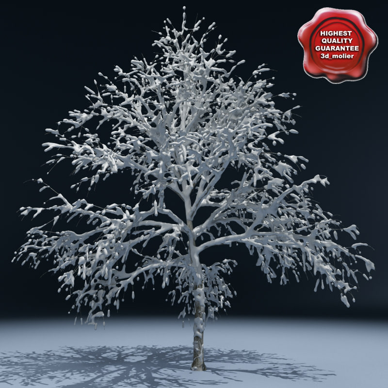 3d model winter tree v1