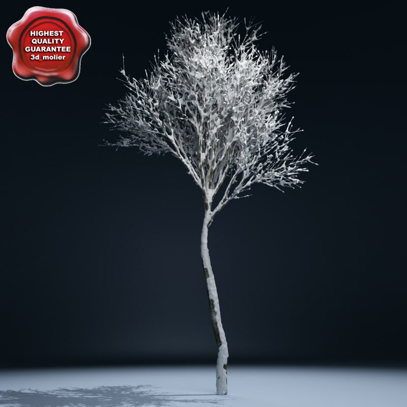 max winter tree v2