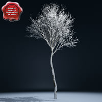 Winter Tree V2